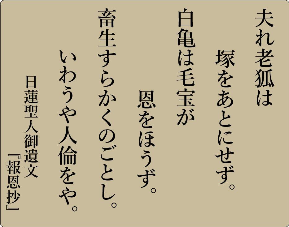 平成28年6月 海徳寺 寺報