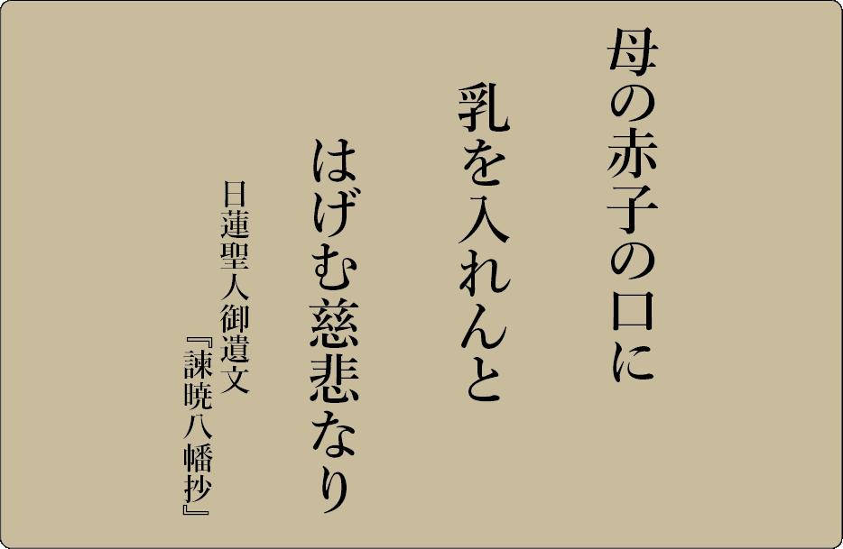 平成28年11月 海徳寺 寺報