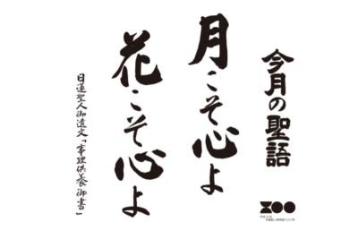 平成31年4月報恩道語