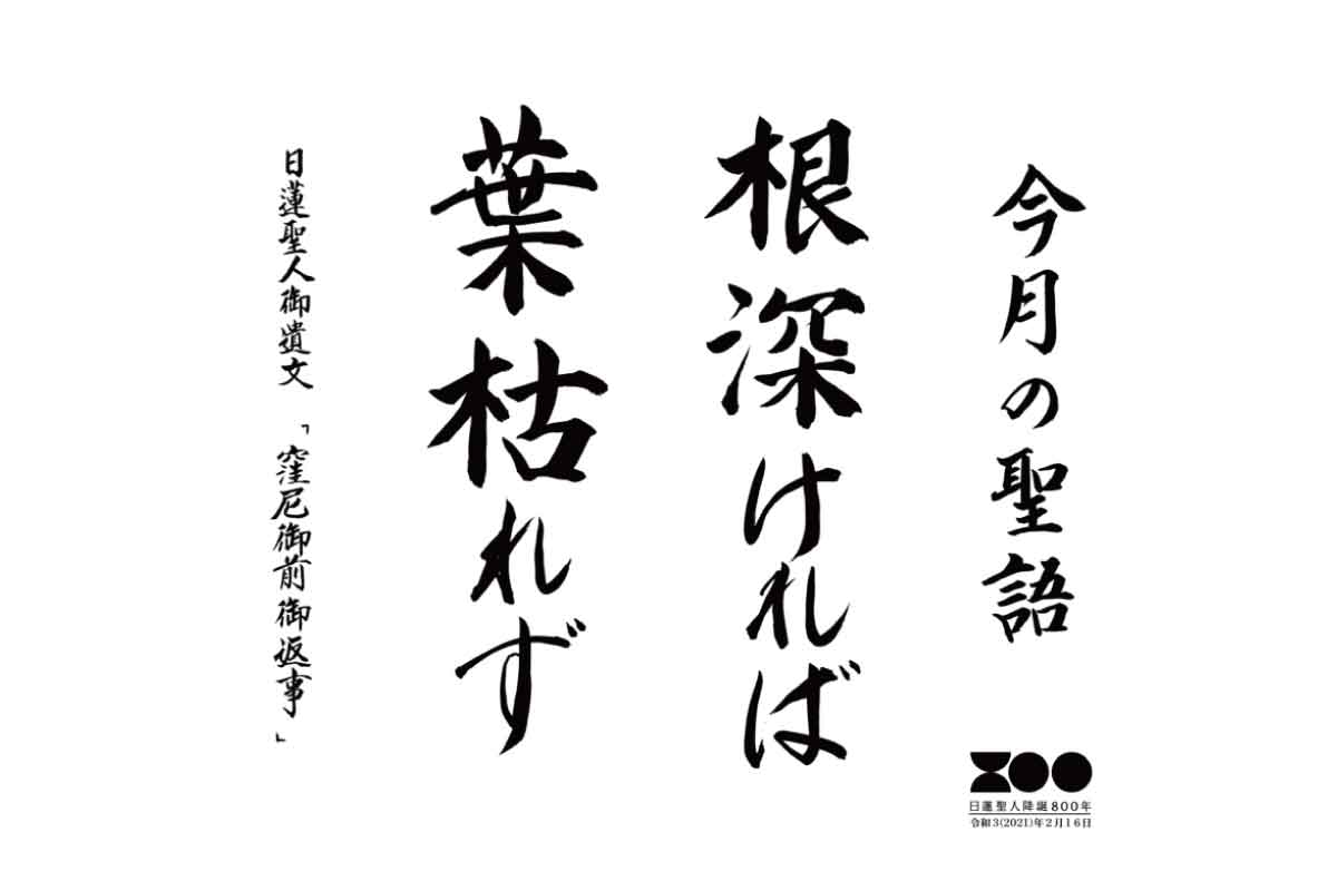 令和元年6月 海徳寺 寺報